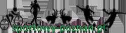 http://sportowy-poznan.pl/